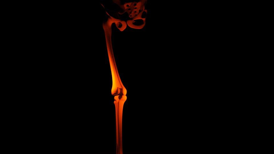 aregel_mod_female_body_bind_new_skin27_fertigRig_Skelett1