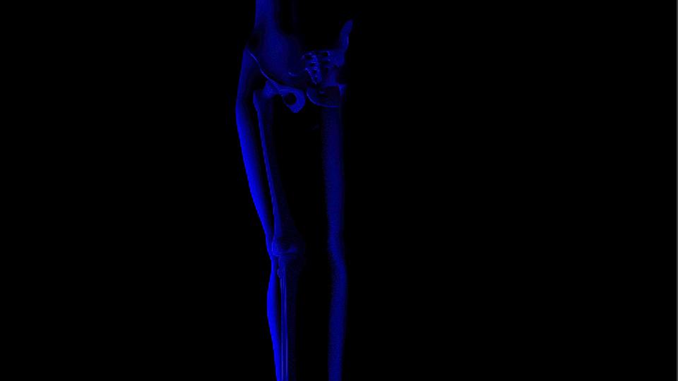 aregel_mod_skelet_mesh_render3_schnittmenge